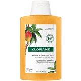 shampoo nutritivo com manteiga de manga cabelos secos 200ml
