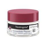 Neutrogena Bálsamo nariz e lábios 15ml