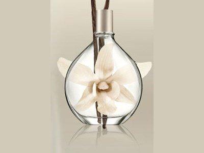 dkny-pure-drop-vanilla-scent-spray-sld-7